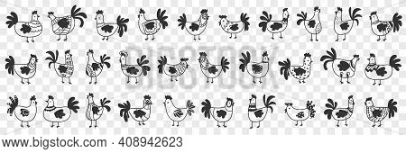 Hens And Roosters Doodle Set. Collection Of Hand Drawn Dark Silhouettes Of Farm Chickens Hens And Ro