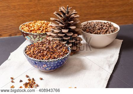 Pine Cone And Three Bowls With Peeled Pine Nuts, Skins And Whole. Still Life On A Table With A Light