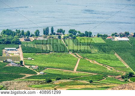 Landscape Overview With Farmers Land At Okanagan Lake On Summer Day