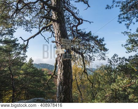Czech Republic, Houska, October 25, 2020: Tree Trunk With Tourist Signpost Or Guidepost Vyhlidka Na