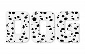 Text DOG woolly Dalmatians isolated on white background poster