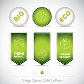 Bio Eco Organic Label Natural Icon Element poster