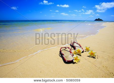 Sandals And Flowers On A Hawaii Beach