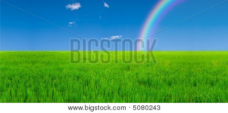 Field And Rainbow