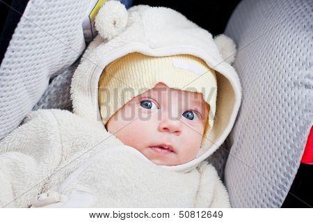 Newborn In The Car Seat