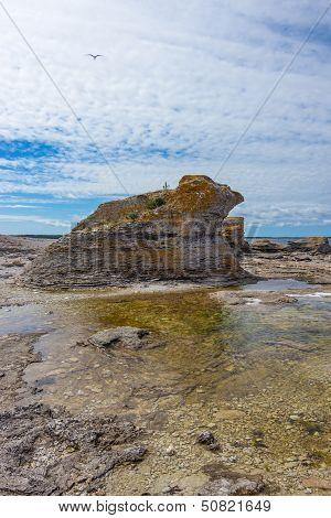 Limestone cliff (rauk) on the East coast of Sweden. F�r� island Gotland. poster