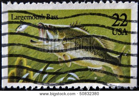 United States Of America - Circa 1990: A Stamp Printed In Usa Shows A Largemouth Bass, Circa 1990