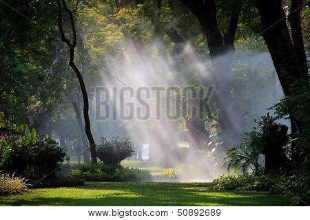 Water Sprau Amd Light In Public Park