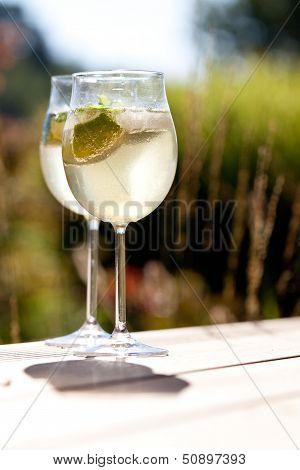 Hugo Prosecco Elderflower Soda Ice Summer Drink