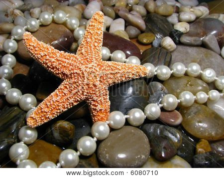 Pearls With Starfish And Rocks
