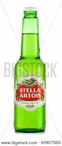 Bottle Of Stella Artois Beer Isolated On White