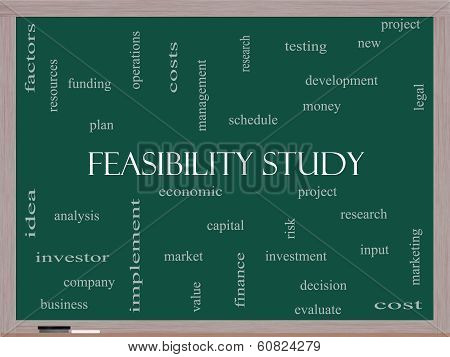 Feasibility Study Word Cloud Concept on a Blackboard with great terms such as testing new project and more. poster