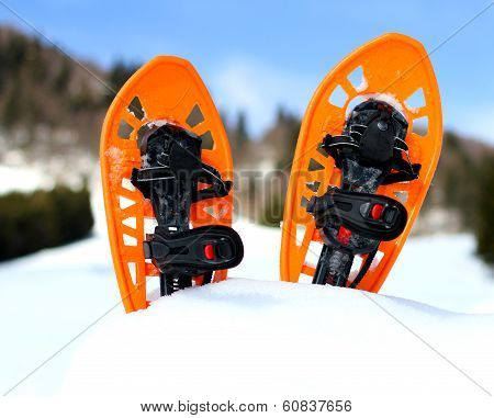 Orange Snowshoes For Walking On The White Snow And Blue Sky