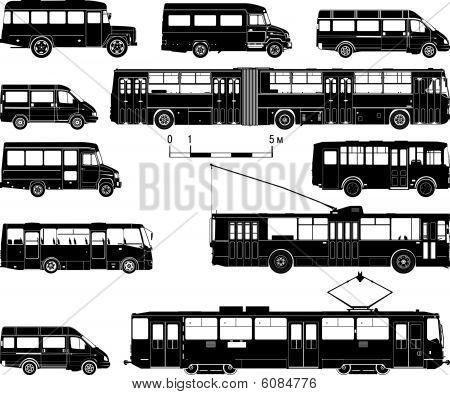 Vector hi-detailed public transportation set