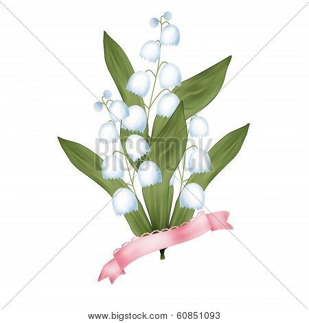 Bunch of lilies of the valley on white background poster