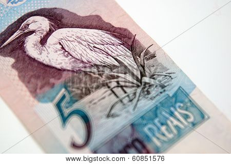 Paper Bill From Brazil, Five Reais With A Crane