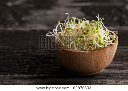 Red Clover Sprouts In A Wooden Bowl