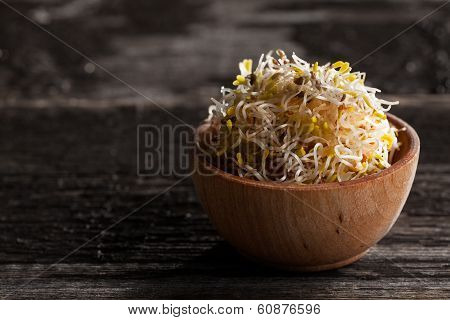 Alfalfa Sprouts In A Wooden Bowl