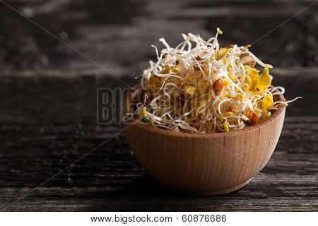 Lentils Sprouts Mix In A Wooden Bowl