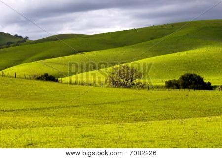 Rolling Hills Of California