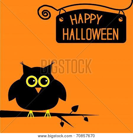 Happy Halloween  Cute Owl Card.