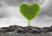 Conceptual image with green heart growing on ruins poster