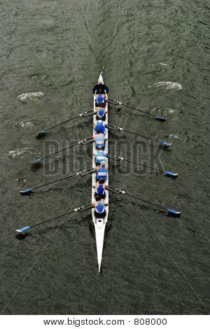 Rowing In Crew Races