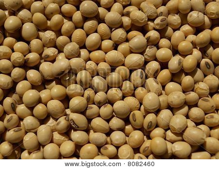 Closeup of soy beans