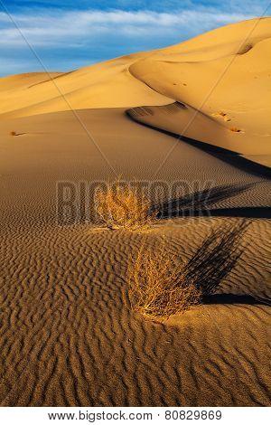 Eureka Valley Sand Dunes Death Valley