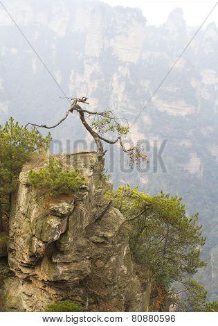 Zhangjiajie Geological National Park, China. Avatar mountains poster