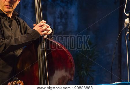 Concert With Cello
