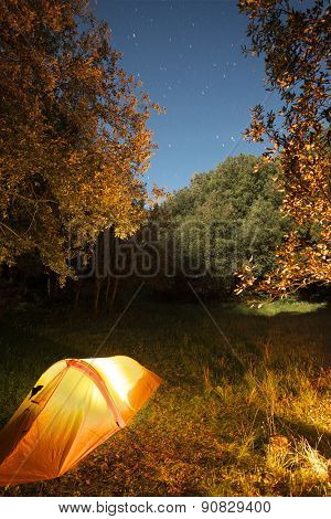 illuminated one person tent in the woods of Etna Park under starry blue sky, Sicily