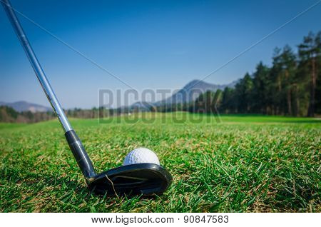 Chipping A Golf Ball Onto The Green With Driver Golf Club.