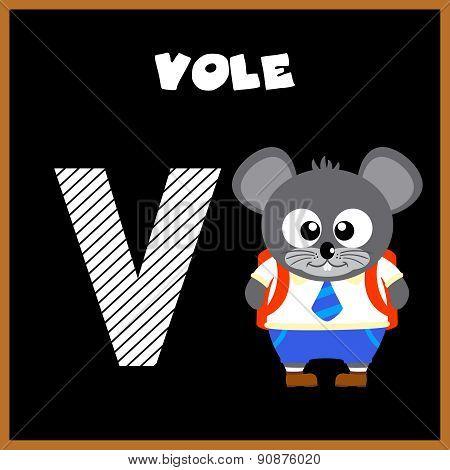 The English alphabet letter V