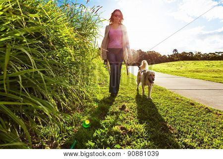 Young woman and golden retriever walking in the long grass