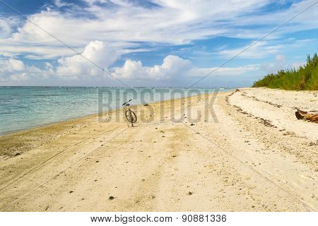Lone Push Bicycle On A Tropical Desert Beach
