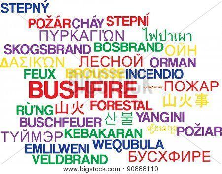 Background concept wordcloud multilanguage international many language illustration of bushfire