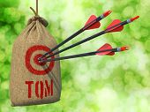 TQM - Total Quality Management - Three Arrows Hit in Red Target on a Hanging Sack on Natural Bokeh Background. poster