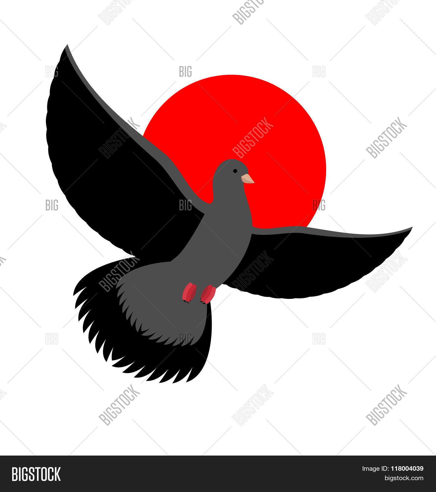 Black Dove Symbol Vector Photo Free Trial Bigstock