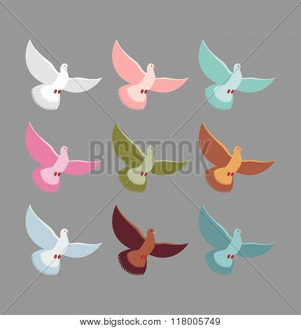Color Pigeons. Set Of Colorful Flying Birds. Dove Soars With Wingspan.