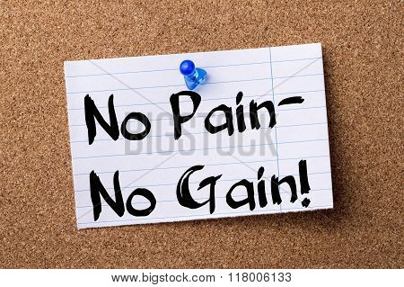 No Pain - No Gain! - Teared Note Paper  Pinned On Bulletin Board