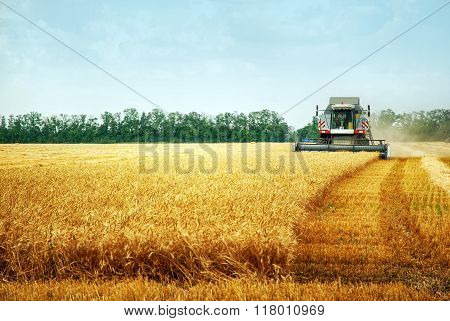 Combine Harvwster Harvesting Wheat On Sunny Summer Day