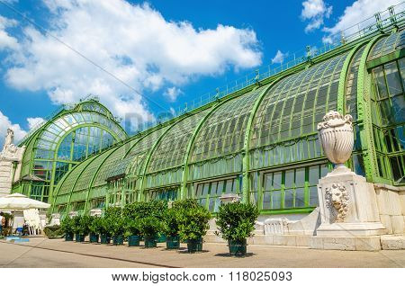 Amazing the Palm and Butterfly house in Vienna's Burggarten, Austria