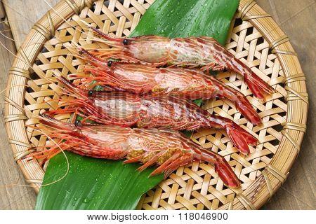 morotoge shrimp, shima ebi, japanese seafood