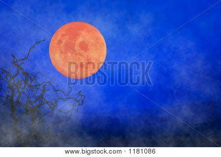 Halloween Background ~ Full Moon & Twisted Tree Branches