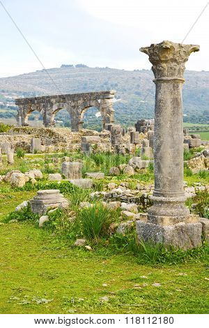 Volubilis In Morocco  And Site