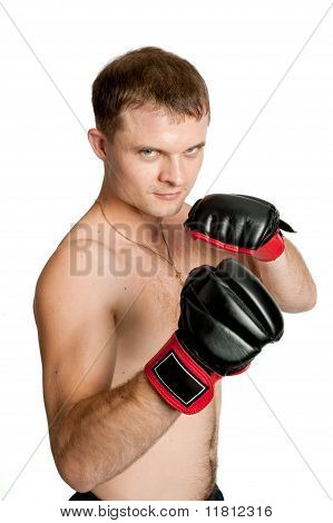 Professional Boxer Isolated On White Background