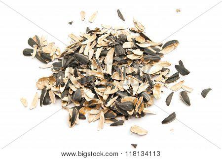 Husks Of Sunflower Seeds