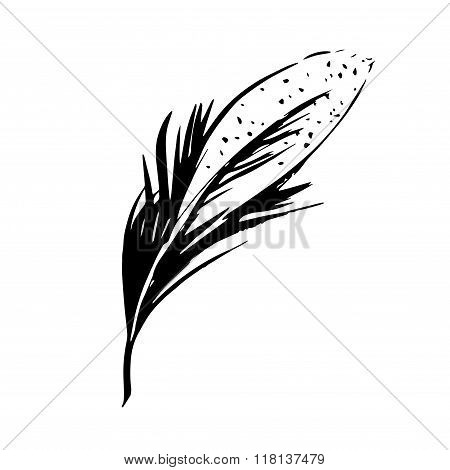 Hand drawn bird feather, Symbol of knowledge, writing and learning. Vector black and white illustrat