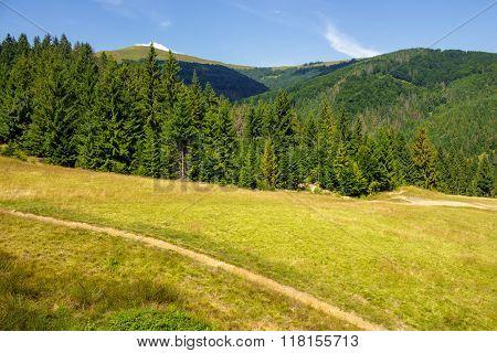 Path To Mountains